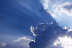 светит солнцу Стоковые Изображения