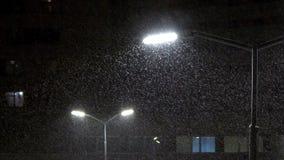 Светит уличному фонарю Снег падает на ночу акции видеоматериалы