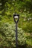 светильник вел улицу Стоковое фото RF