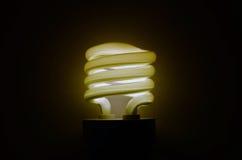 светильник энергии земли сохраняет сбережениа Стоковое Изображение RF
