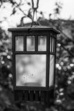 светильник Стоковая Фотография
