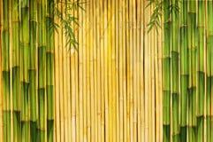 Светлая золотистая bamboo предпосылка Стоковое Изображение