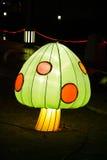 светлая ноча гриба Стоковое Изображение RF