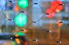 Светлая сеть водить Стоковое фото RF