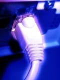 светлая сеть Стоковое фото RF