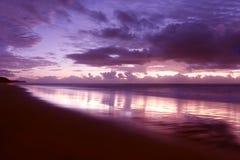 светлое утро Стоковое Изображение RF
