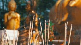 Светлые ручки ладана с дымом в буддийском виске Таиланд Паттайя сток-видео