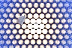 светлые этапы сумеречницы Стоковые Фото