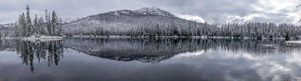Светлый снег предусматривал деревья и гору с отражением на озере стоковое фото
