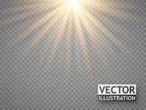 Световой эффект Теплые лучи солнца изолированные на прозрачной предпосылке Стоковое Изображение RF