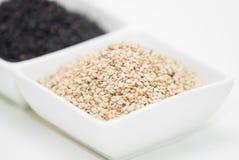 Светотеневые семена сезама Стоковое Изображение