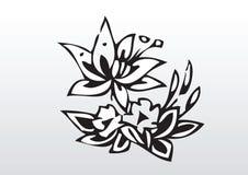 Светотеневые цветки Стоковая Фотография