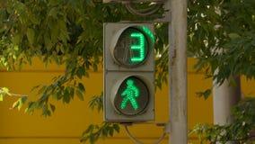 Светофор для пешеходов на улице на летний день на предпосылке зеленой листвы деревьев акции видеоматериалы