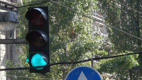 Светофор регулирует движение автомобилей акции видеоматериалы