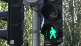 Светофор регулирует движение автомобилей сток-видео