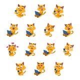 Светское развлечение желтых котов Стоковое фото RF