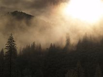 светя валы солнца Стоковое фото RF