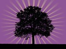 светя вал Стоковое Изображение RF