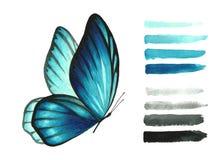 Свет акварели - голубые бабочка и щетка стоковое изображение