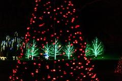 Светлая выставка в установке сада на времени праздника Стоковые Фото