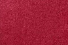 Светлая красная кожаная предпосылка текстуры Фото крупного плана Стоковое фото RF