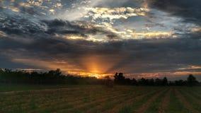 Свет бежит вне Стоковое Фото