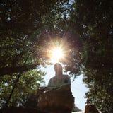 свет Будды Стоковое фото RF