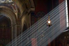 свет видит Стоковые Изображения RF