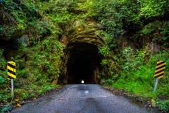 Свет в конце тоннеля стоковое изображение rf