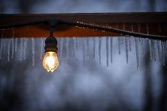 Свет в шторме льда стоковое изображение