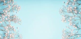 Свет - голубая флористическая рамка предпосылки с белыми цветками гипсофилы Цветки s-дыхания ` младенца на пастели стоковое изображение