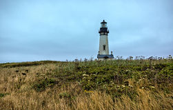 Свет головы Yaquina, Ньюпорт, Орегон Стоковые Изображения RF
