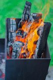 Свет гриля барбекю путем подготовка угля от древесины для варить пикник в природе стоковое фото