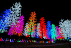 свет дисплея Стоковые Фотографии RF