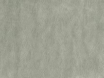Свет - зеленый цвет - серая кожа предпосылки Текстурированный камень Стоковая Фотография RF