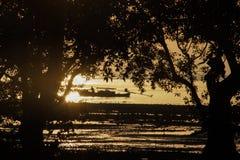 Свет золота силуэта Стоковое фото RF