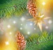 Свет и звезды рождества на рождественской елке Стоковая Фотография RF