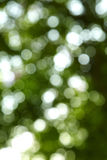 Свет и темная ая-зелен предпосылка Стоковая Фотография