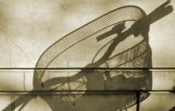 Свет и тень велосипеда Стоковые Фотографии RF