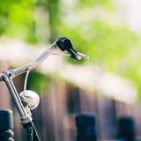 Свет и handlebar винтажного велосипеда города красочный ретро Стоковая Фотография RF