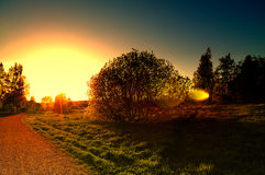 Свет надежды в конце дороги Стоковое Фото