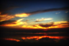 Свет на утро Стоковое Изображение RF
