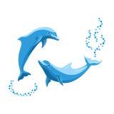 2 светлое - голубые дельфины Стоковые Фотографии RF