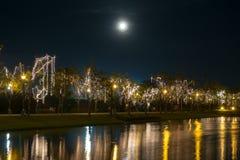 Свет приведенный на дереве в праздниках стоковое изображение rf
