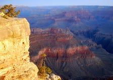 свет рассвета каньона грандиозный Стоковая Фотография RF
