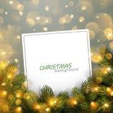Свет рождества с ветвями ели Стоковое Фото