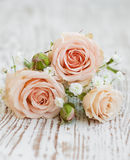 Свет - розовые розы стоковые изображения rf