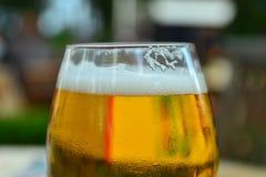 свет стекла пива предпосылок - желтый цвет Стоковые Фотографии RF