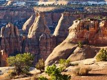 Свет утра в каньоне памятника Стоковые Изображения