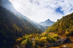 Свет утра между деревьями и горами, Пьемонтом, Италией Стоковое фото RF